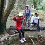 冒険の森5