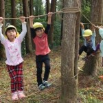 冒険の森6