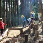 冒険の森7